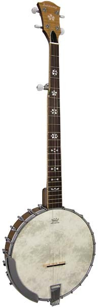 Ashbury AB-48 5-String Banjo