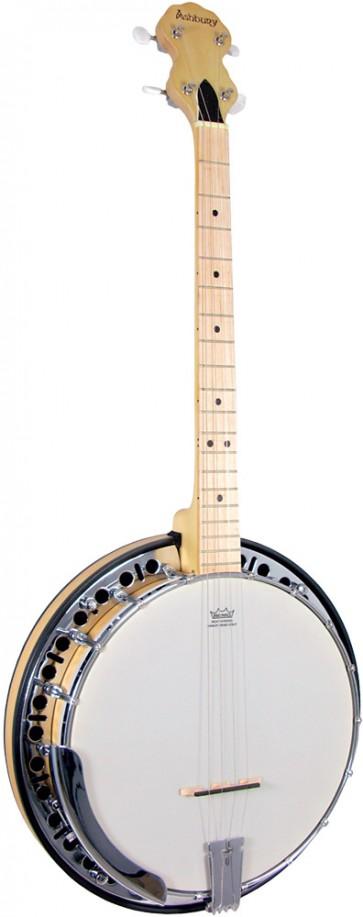 Ashbury AB-65 4 string Banjo