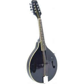 Ashbury AM-10 Mandolin, Black