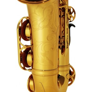 NEW: Yamaha YAS 62 Alto Saxophone Outfit